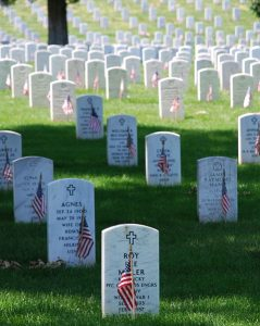 Veteran's Day Dual Perspective - Author, Terry Swejkoski
